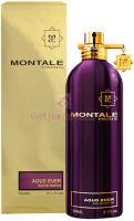 Montale Paris Aoud Ever Parfémovaná voda 100ml U