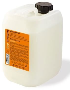 INEBRYA DRY-T Shampoo 10l W